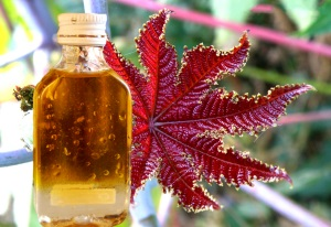 Применение касторового масла для лица