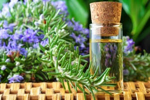 Применение масла розмарина для лица