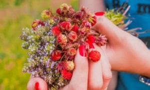 Лесная ягода в косметологии