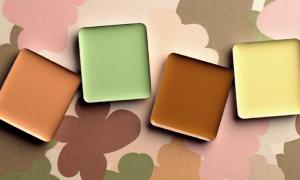 Как правильно подобрать цвет продукта?